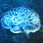 How Drugs Affect The Brain: Limbic System, Long Term Effects